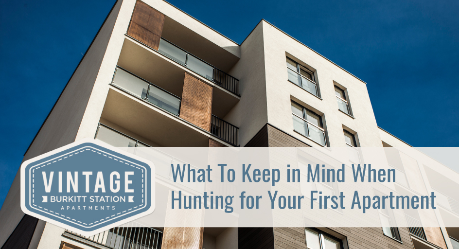 What To Keep In Mind When Hunting For Your First Apartment